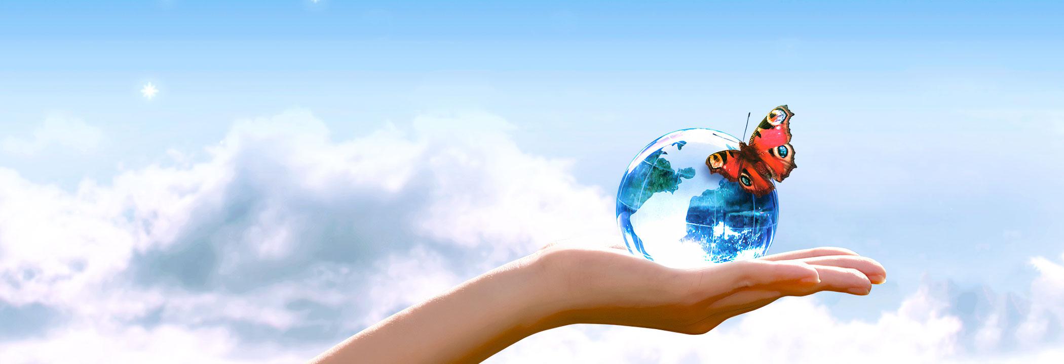 Photovoltaik - aktiver Klimaschutz