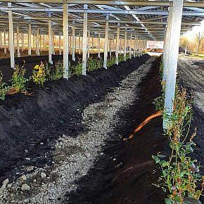 GMS® DOUBLE plant at Büren