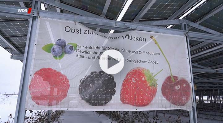 Agri-PV WDR-Video